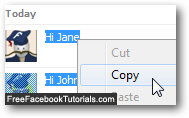 Copy your Facebook chat exchange in your web browser